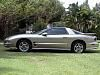 Pewter Trans Am (267,735 bytes)